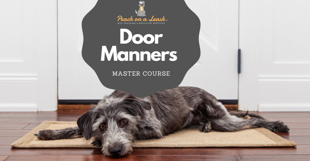 dog-manners-door