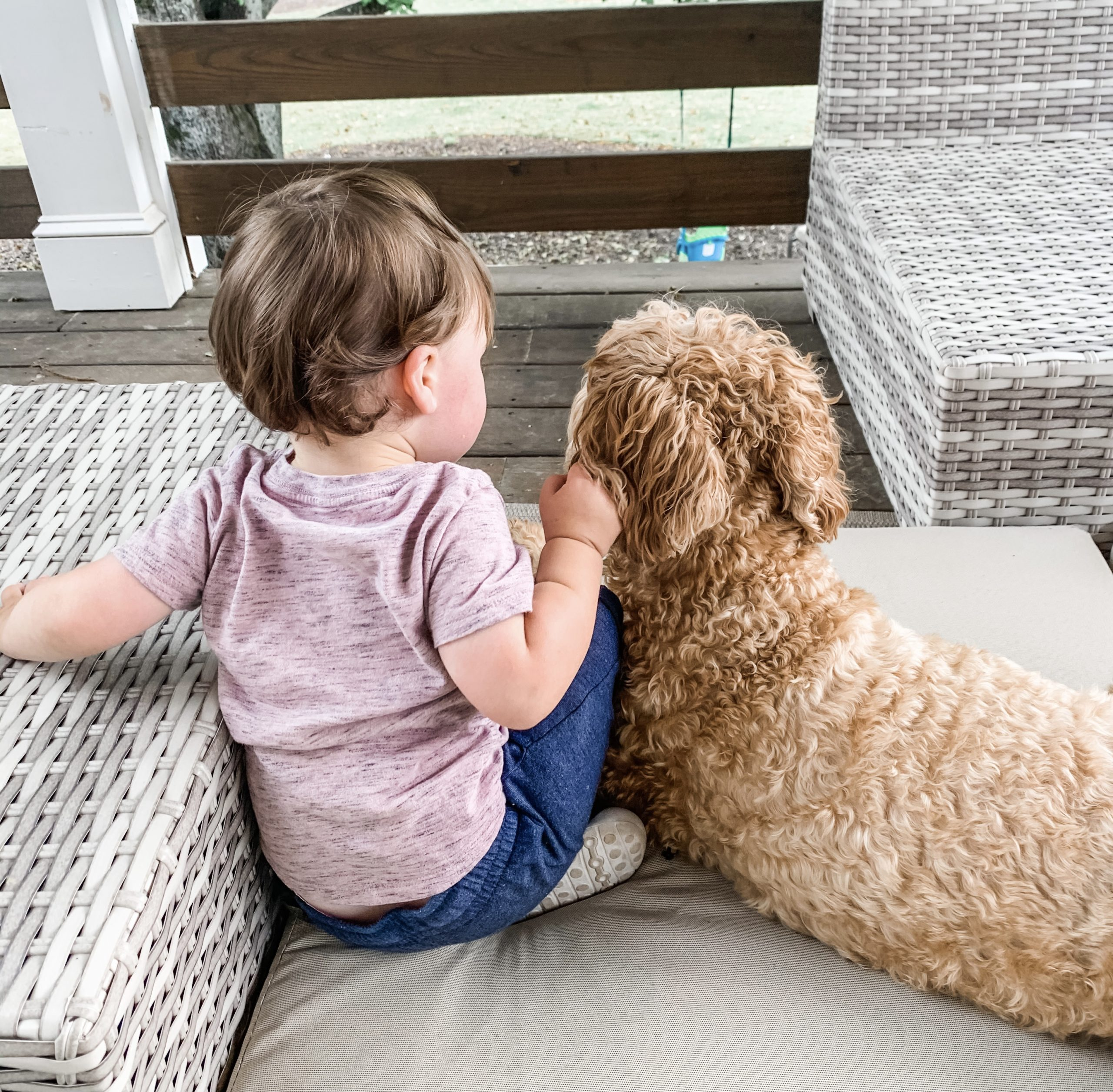 My toddler and one of our dogs.